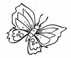 Ausmalbilder Schmetterling Ausdrucken Ausmalbilder Schmetterling Kostenlos Malvorlagen Zum