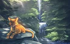 3407 best wcc warrior cats community wcc images