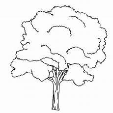 Malvorlagen Winter Nights Malvorlagen Baum In 2020 Tree Drawings