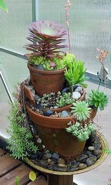 Creating A Garden Succulents Garden Garden Plants