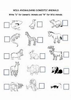 worksheets on domestic animals for grade 1 14267 worksheets and domestic animals