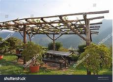 A Pergola In A Garden Forming A Shaded Walkway Passageway