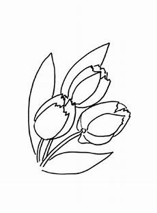 Ausmalbilder Blumen Tulpen Ausmalbilder Tulpen 4 Tulpen Malvorlagen