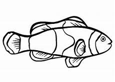 39 fish templates free premium templates