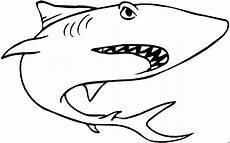 grimmiger hai unten ausmalbild malvorlage tiere