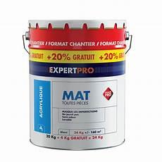 Peinture Acrylique Expert Pro Mat Blanc 20kg 20 Offerts