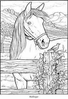 Malvorlagen Pferde Kostenlos Gratis Http Www Doverpublications Zb Sles 817911