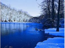 Wallpapers: Winter Scenery