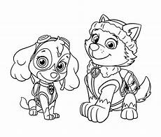 Gratis Malvorlagen Paw Patrol Pin By Jennfer Robinson On Color Pages Paw Patrol