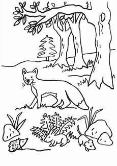 Ausmalbild Hase Und Igel F 252 Chse Fuchs Igel Hase Und Maus Zum Ausmalen