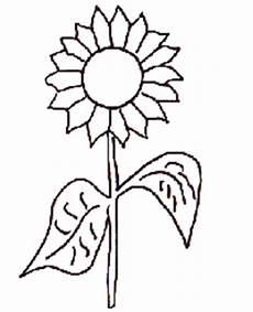 Ausmalbilder Pflanzen Blumen Malvorlagen Blumen Ausmalbilder