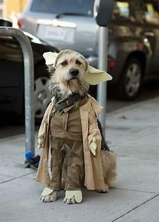 Wars Hund - wars kost 252 me f 252 r hunde darth vader yoda ewok