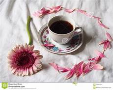 fiori coffee a cup of coffee with flowers stock photo image of drink