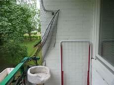 Wie Kann Ich Meinen Balkon Richtig Katzensicher Gestalten
