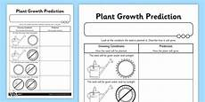 plant growth worksheet for grade 2 13757 plant growth prediction worksheet plants living things plant growth