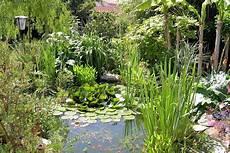 des exemples de bassins pour une touche aquatique