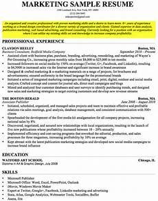 25 elegant professional objective for resume exles