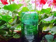 pflanzen bewässern mit plastikflasche pflanzen allein zu hause antenne steiermark