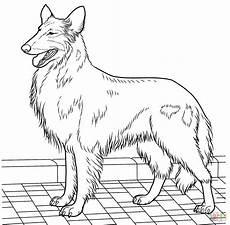 ausmalbilder hunde mischlinge kostenlos zum ausdrucken