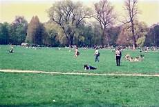 englischer garten fkk gardens where sunbathing is the norm in