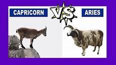 Widder Und Steinbock - capricorn vs aries who is the strongest zodiac sign
