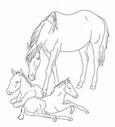 Ausmalbild Pferde Fohlen Konabeun Zum Ausdrucken Ausmalbilder Pferde Mit Fohlen