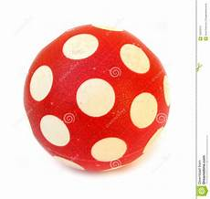Rote Kugel Mit Wei 223 En Punkten Stockfoto Bild Schnitt