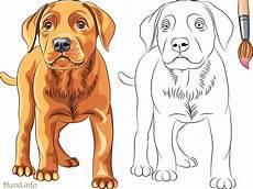 Hunde Ausmalbilder Labrador Ausmalbilder Mit Hunden Hunde