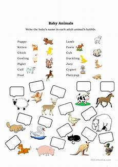animal worksheets grade 2 13869 baby animals worksheet free esl printable worksheets made by teachers