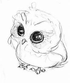 Eule Hedwig Malvorlage Idee Shannyn Steel Auf Owls Niedliche Zeichnungen