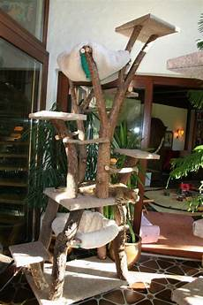 Kratzbaum Mehr Catifying Cat Tree Designs Cat Tree A