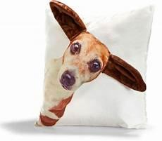 Tier Kissen Hund Netto Marken Discount Ansehen