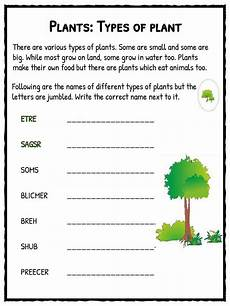 types of plant worksheet kidskonnect