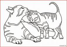 ausmalbilder katzen kostenlos ausdrucken rooms project