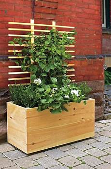blumenkasten selber machen home garden pea trellis contemporary gardens and bed