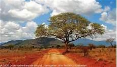 malvorlagen landschaften gratis java quia vegetationszonen afrikas