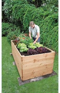 hochbeete selber bauen und bepflanzen hochbeet bauen wohnidee hochbeet hochbeet bauen und