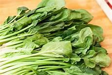 rezept frischer spinat pide mit spinat kochfaszination de