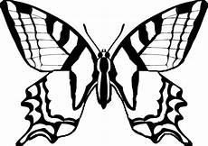 Malvorlagen Schmetterling Gratis Ausmalbilder Schmetterlinge Ausmalbilder