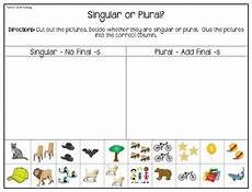 regular plural noun practice interactive book worksheets tpt