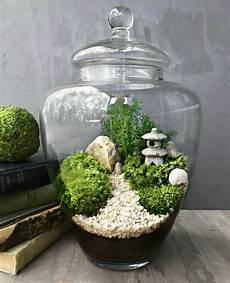 15 Mini Jardins Zen 224 R 233 Aliser D Urgence Mini Jardin