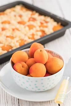Aprikosenkuchen Mit Frischen Aprikosen - aprikosenkuchen mit quark und streuseln backen macht