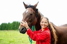 Op Versicherung Pferd - pferde op versicherung vergleich 100 vollschutz