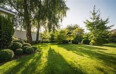 Die Schönsten Gartenbäume - g 228 rten des jahres