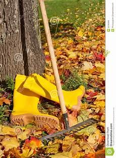 Gartenarbeiten Im Herbst - gartenarbeit im herbst stockfoto bild wald 228 nderung