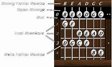 Dave S Six String Bass Resource Page Help Charts