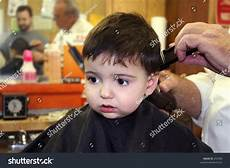 toddler boy getting his first hair 253306