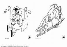 Insekten Ausmalbilder Gratis Bilder Zum Ausmalen Insekten Kinder Zeichnen Und Ausmalen