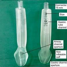 Malvorlagen Igel Lma Pdf Comparison Of The Proseal Lma And Intersurgical I
