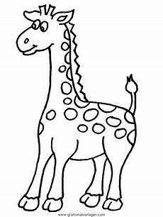 Malvorlagen Giraffen Gratis Giraffen 11 Gratis Malvorlage In Giraffen Tiere Ausmalen